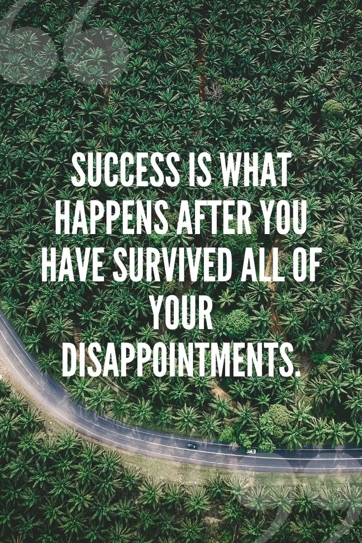 Success Is What Happens After You Have Survived All Of Your Disappointments.