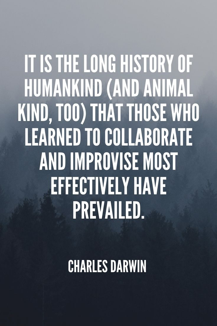 'it Is The Long History Of Humankind (and Animal Kind, Too) That Those Who Learned To Collaborate And Improvise Most Effectively Have Prevailed.' – Charles Darwin