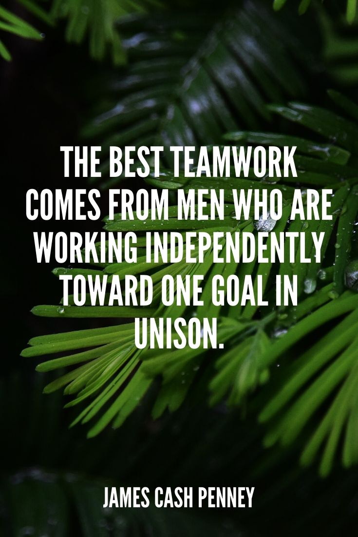 'the Best Teamwork Comes From Men Who Are Working Independently Toward One Goal In Unison.' – James Cash Penney