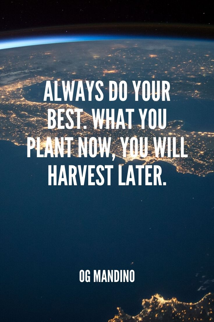 'always Do Your Best. What You Plant Now, You Will Harvest Later.' -og Mandino