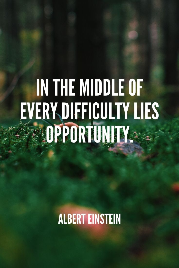 'in The Middle Of Every Difficulty Lies Opportunity.' -albert Einstein