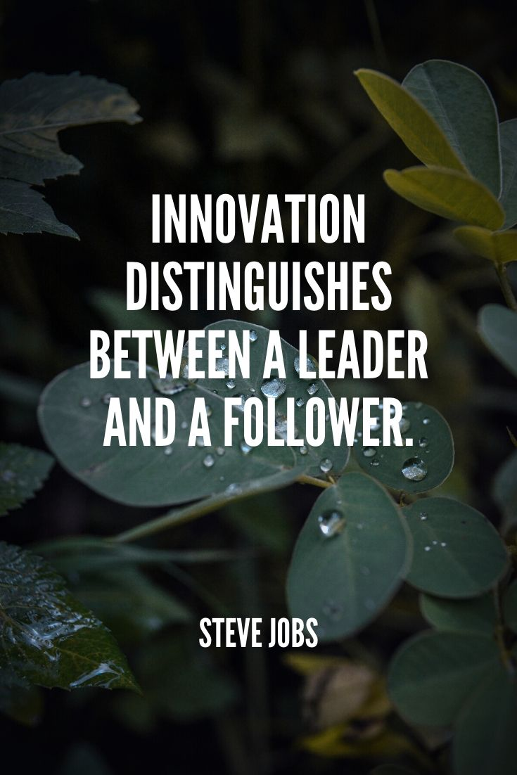 'innovation Distinguishes Between A Leader And A Follower.' -steve Jobs