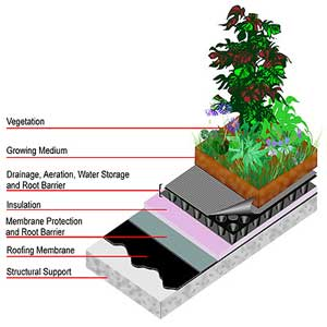 Rooftop Gardens Structure