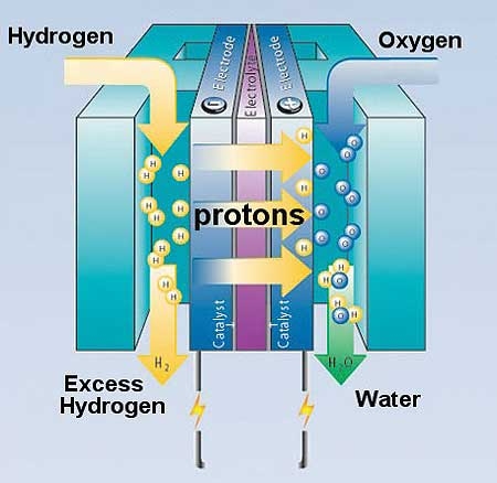 Polymer Fuel Cell Diagram
