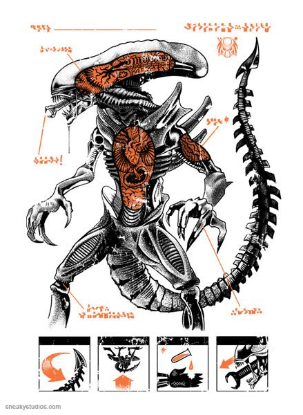 Alien Important Part Anatomy