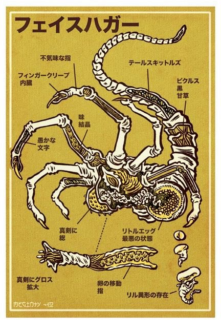 Facehugger Anatomy