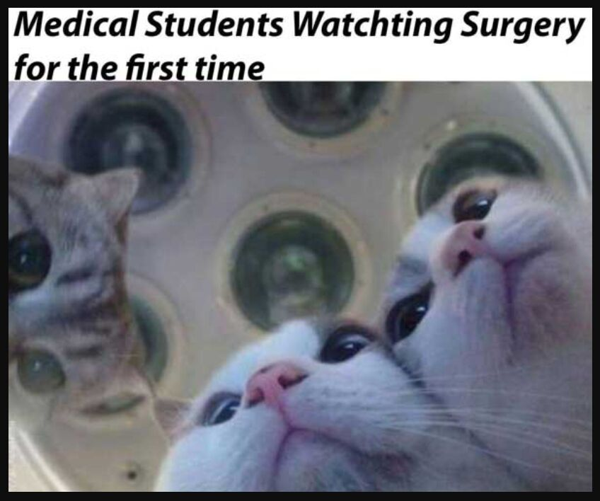 Medical Students Watching Surgery For The Firt Time